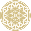 HGH Flower of Life.png